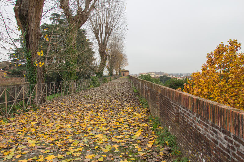 Autumn landscape - fallen yellow leaves and a path in the Medici Fortress of Santa Barbara. Pistoia. Tuscany. Italy. stock photography