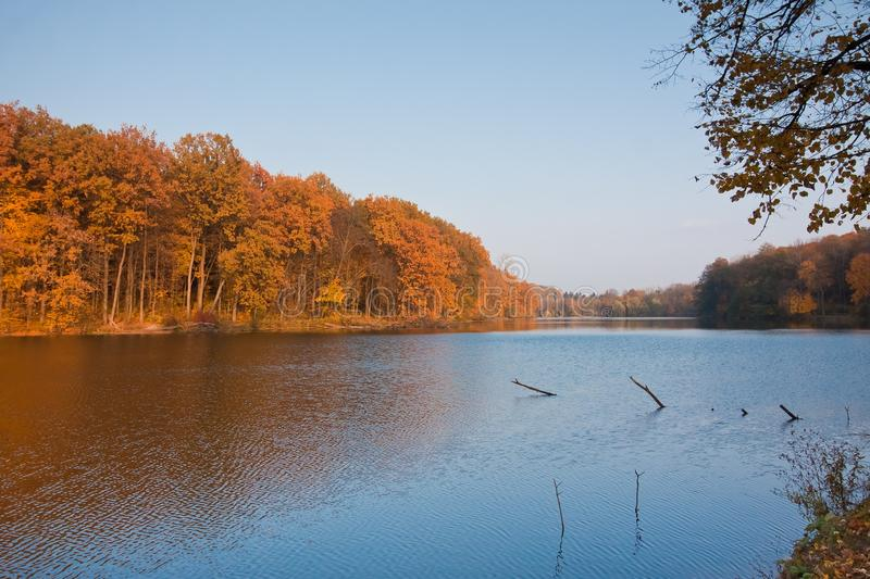 Autumn midday landscape with forest and lake, seasonal background texture photo. Autumn landscape with forest and lake on a sunny warm day, seasonal background royalty free stock images