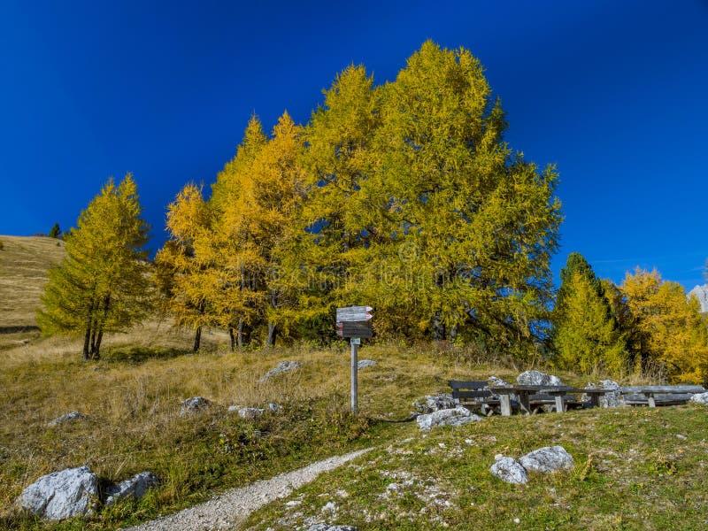 Autumn landscape on Gardena Pass, South Tyrol, Italy stock photo