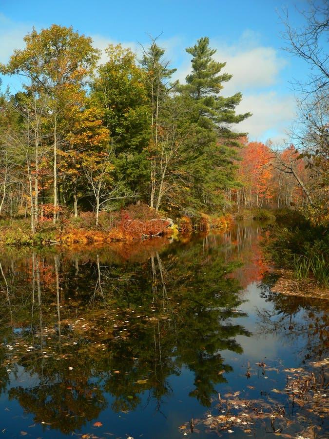Autumn landscape III stock photos