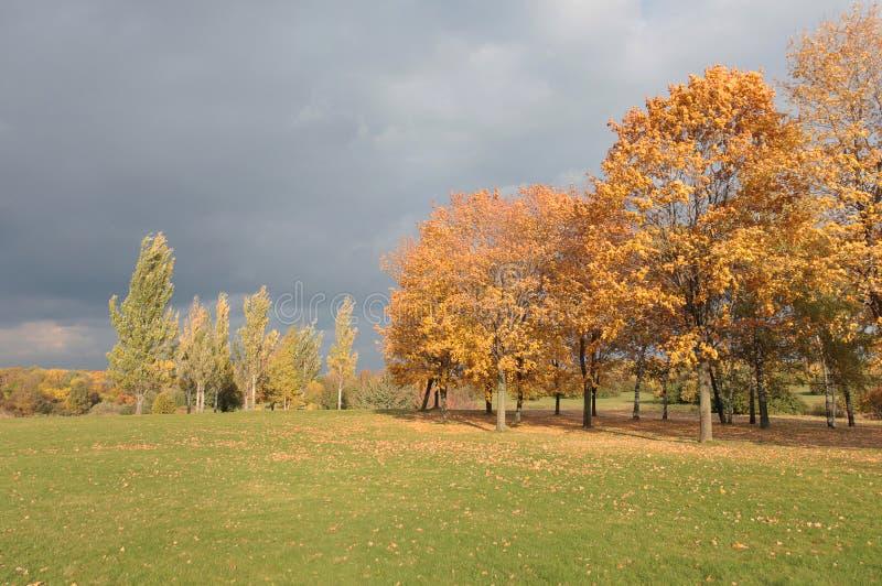 Autumn landscape. Kolomenskoye, Moscow stock photo