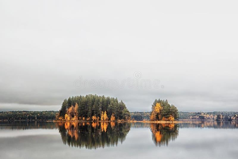 Autumn Landscape Lago Tungozero immagine stock