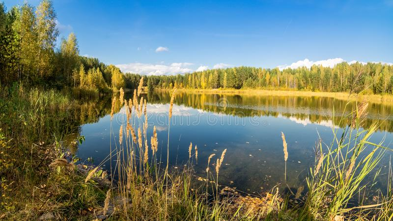 Autumn landscape on the lake with birch forest on the shore, Russia, Ural,. September stock images
