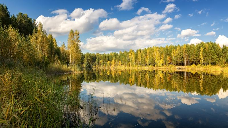 Autumn landscape on the lake with birch forest on the shore, Russia, Ural,. September royalty free stock images