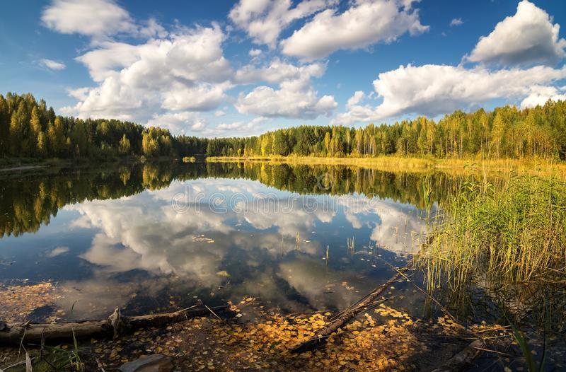 Autumn landscape on the lake with birch forest on the shore, Russia, Ural,. September royalty free stock photography