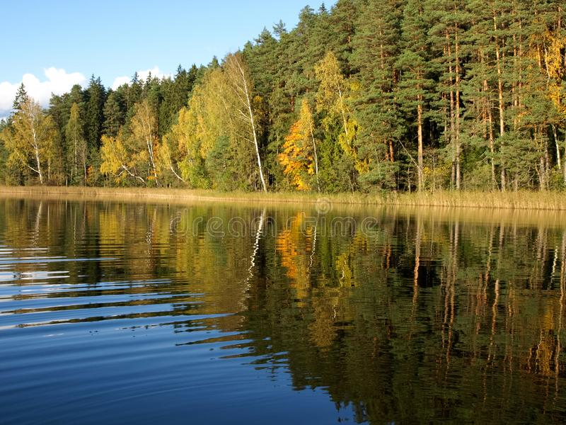Autumn landscape with lake and gorgeous trees, beautiful reflections in calm water stock image