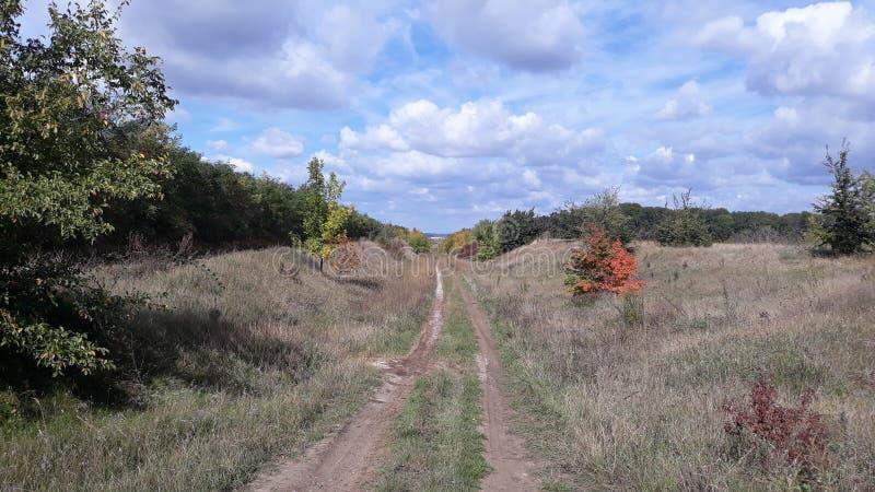 Autumn Landscape Landweg die vooruit leiden Mooie hemel stock foto's