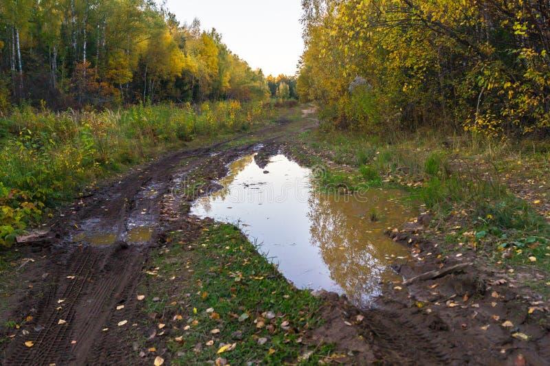 Autumn Landscape Landweg in het platteland na zware regens stock afbeelding