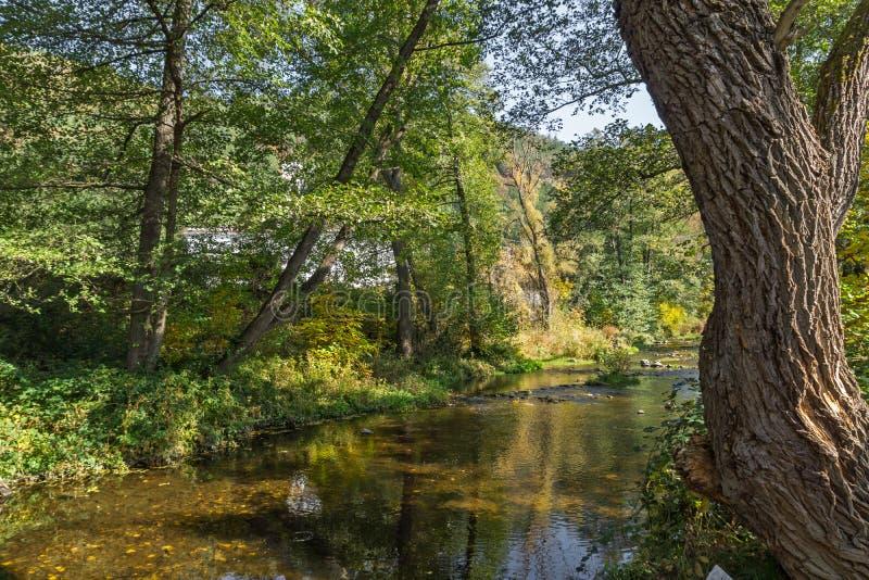 Autumn Landscape med det gula trädet region för stad nära Pancharevo för sjön, Sofia, Bulgarien arkivfoto