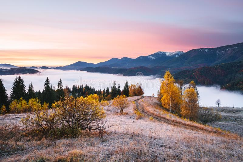 Autumn landscape in the mountains. Picturesque mountain road. Autumn landscape with a morning mist. Beautiful forest in the hills. Birches with yellow leaves stock photos