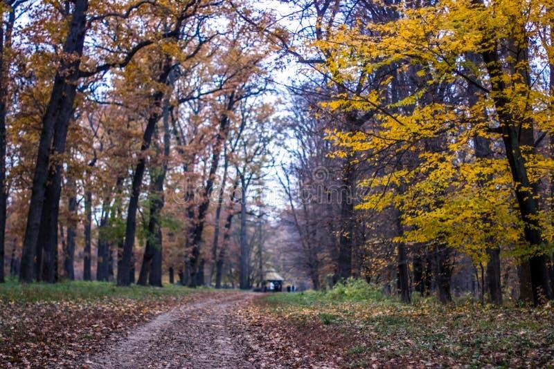 Autumn landscape in the national park Sofiivka, Uman, Ukraine. The most beautiful plases of Europe stock photos