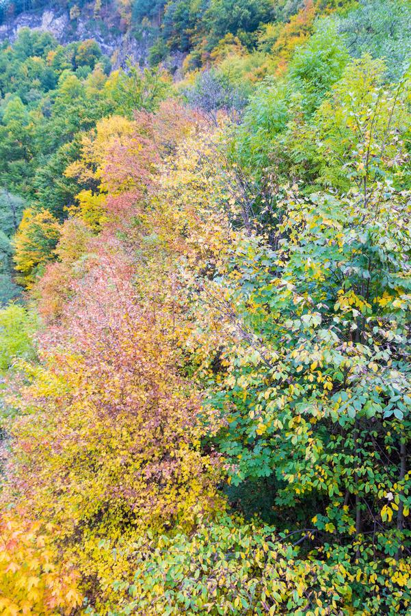 Autumn landscape nature background stock images