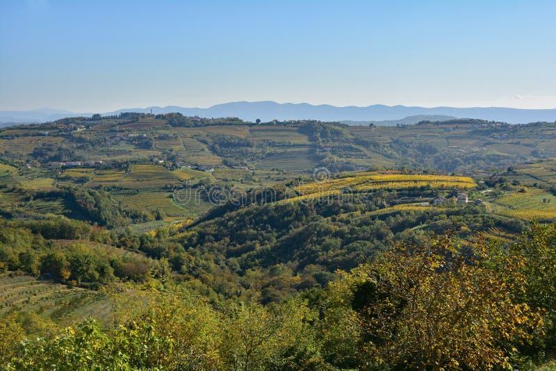 Autumn Landscape Near Smartno. The autumnal landscape around the historic Slovenian town of Smartno in the Brda municipality of Slovenian Littoral royalty free stock photo
