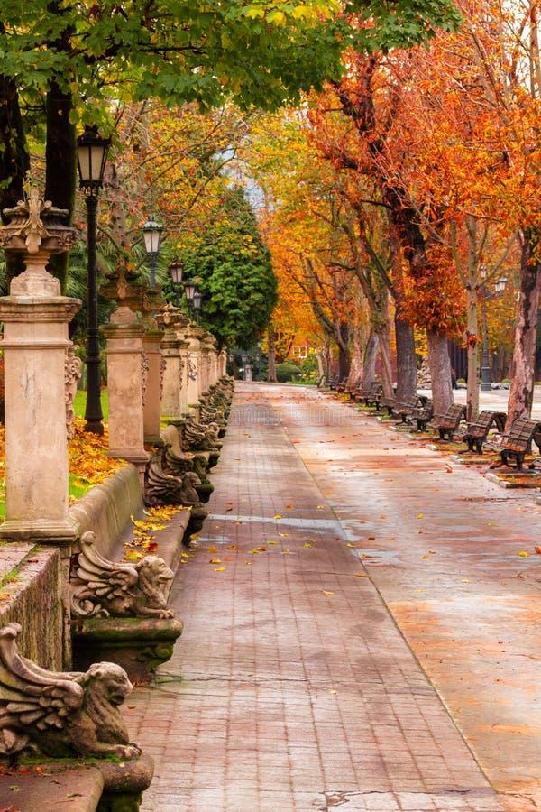 Autumn Landscape Park met kleurrijke bomen, een het lopen steeg en geweven banken en bloempotten spanje stock foto's