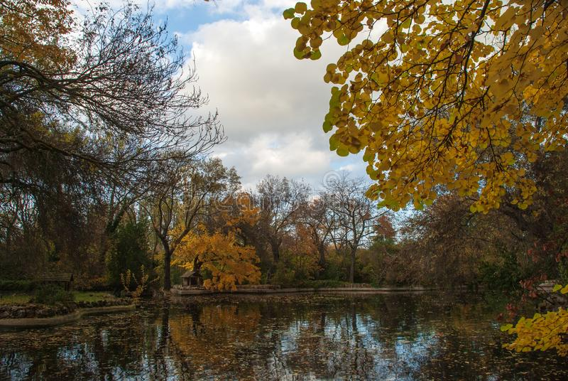 Autumn landscape of pond with trees with yellow leaves in the El Capricho park in Madrid royalty free stock photo