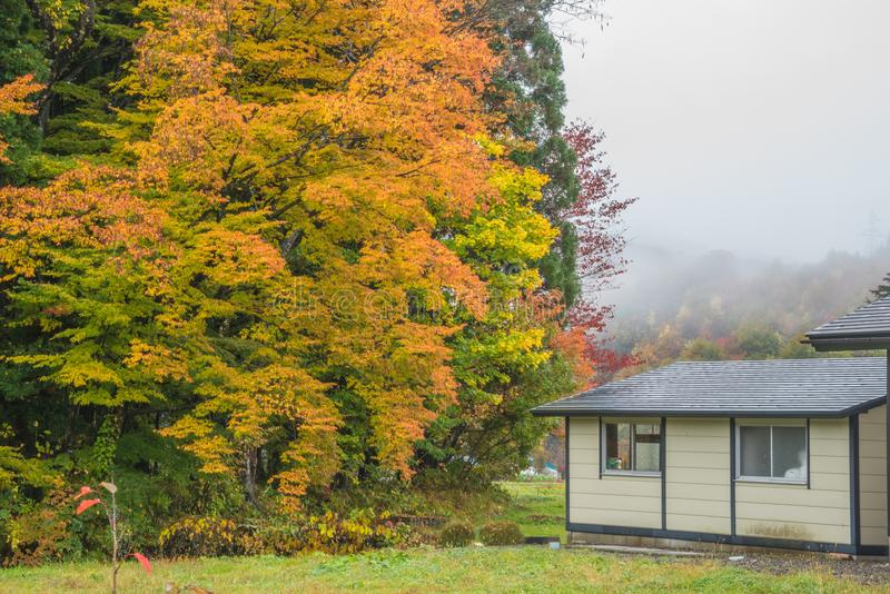 Autumn landscape with home. Autumn landscape and private home stock image