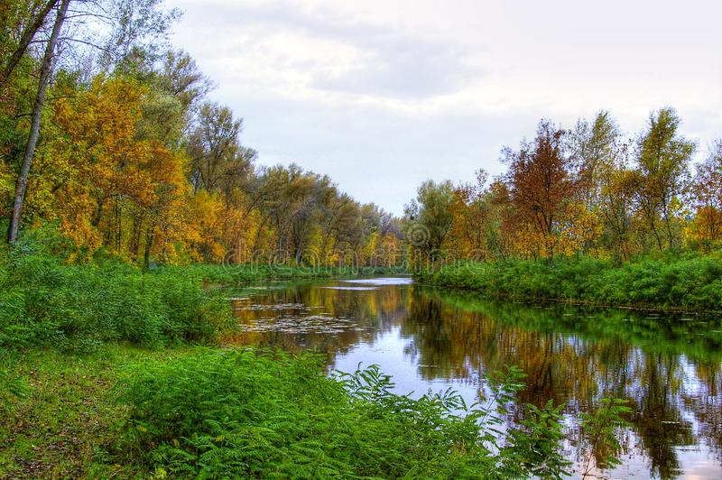 Autumn landscape of river and trees royalty free stock photo