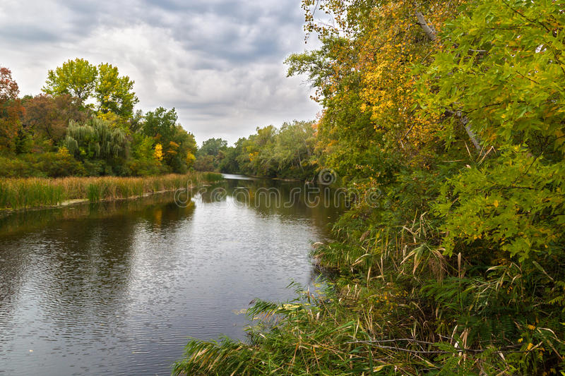 Autumn landscape with river and trees. Autumn landscape with river and trees on overcast cloudy day stock image