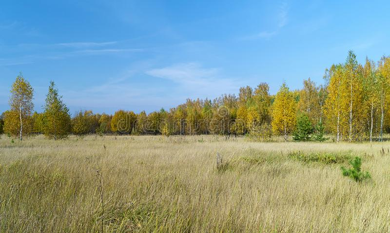 Autumn landscape in rural terrain royalty free stock photos