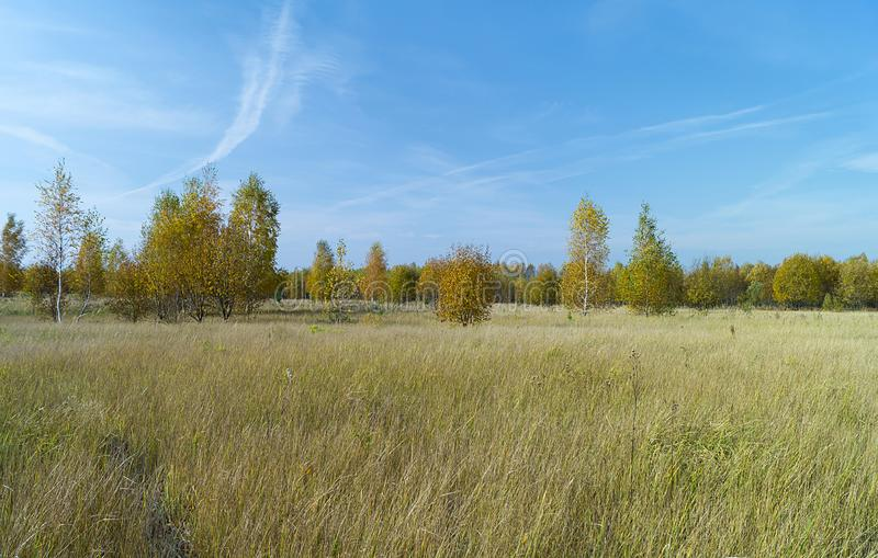 Autumn landscape in rural terrain stock image