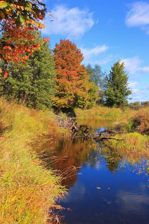 Autumn Landscape, Russia stock photo
