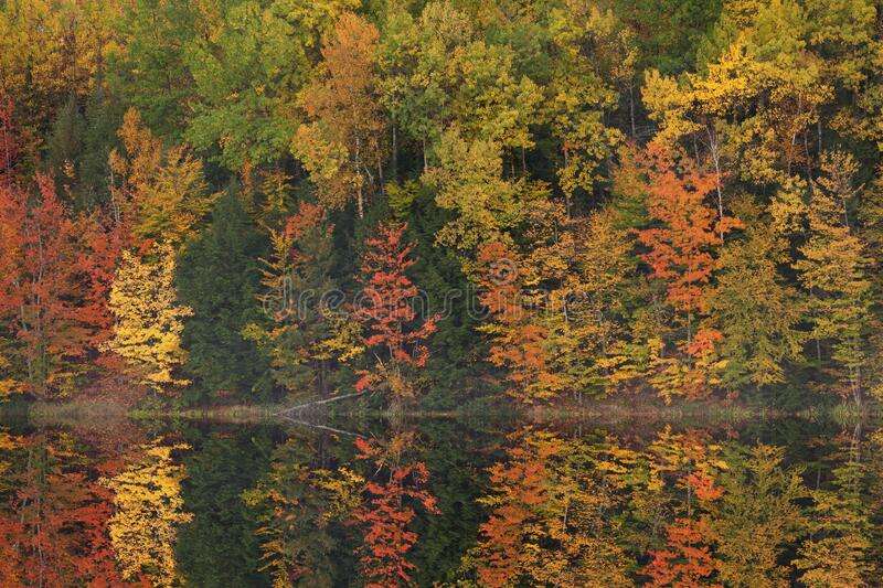 Autumn, Moccasin Lake Reflections stock photography