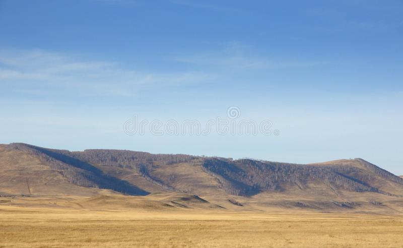 Autumn landscape with smooth hills covered with dry yellow grass under blue sky. In Khakassia, Russia stock image