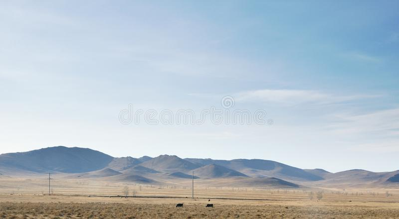 Autumn landscape with smooth hills covered with dry yellow grass under blue sky. In Khakassia, Russia royalty free stock photos