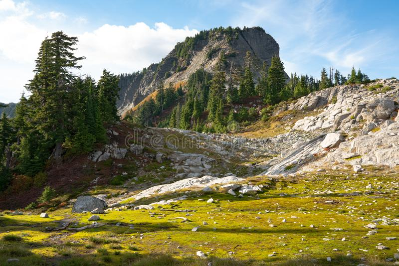 Autumn landscape of snow mountain. And plants in Mt. Baker Hwy, Deming, USA stock photography