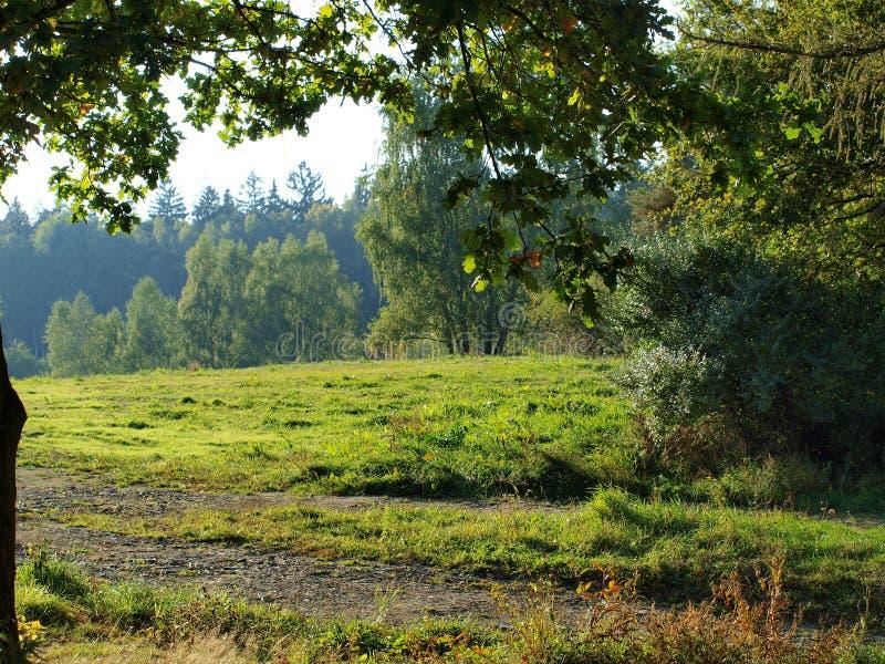 Autumn landscape, southern Bohemia stock image