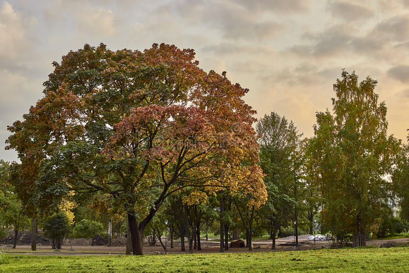 Autumn landscape in St. Petersburg royalty free stock images