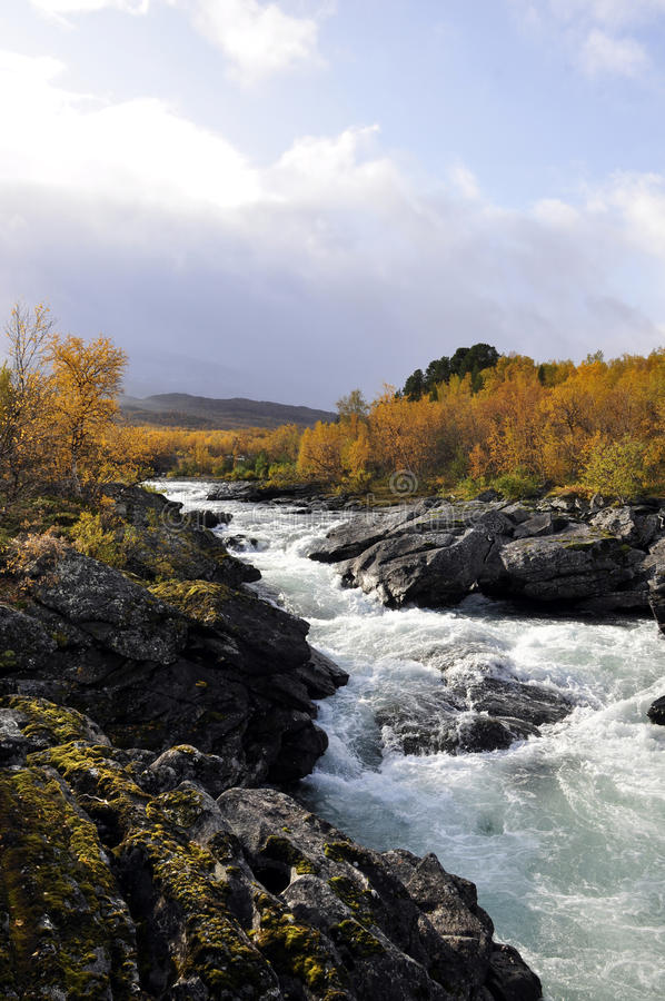 Autumn landscape in Sweden royalty free stock photo