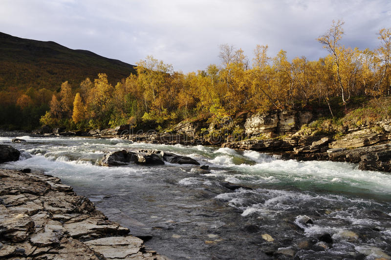 Download Autumn landscape in Sweden stock image. Image of fall - 11068269
