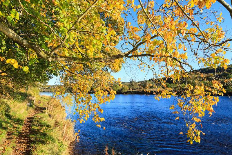 Autumn Landscape und Fluss Dee in Aberdeen lizenzfreies stockbild