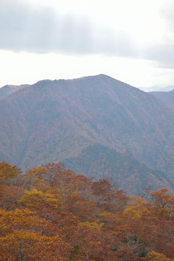 Autumn Landscape van trillende kleurrijke bomen met bergketens royalty-vrije stock foto