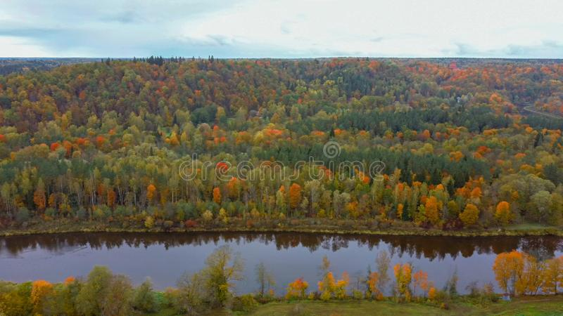 Autumn Landscape View of the Gauja River Surrounded by Forests Colorful Bright Yellow Orange and Green Trees, Sunny Day. royalty free stock image