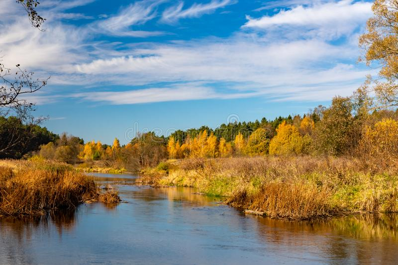 Autumn landscape. View of the river and autumn forest royalty free stock photos