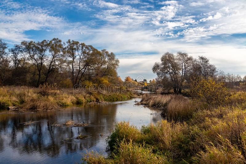 Autumn landscape. View of the river and autumn forest stock images