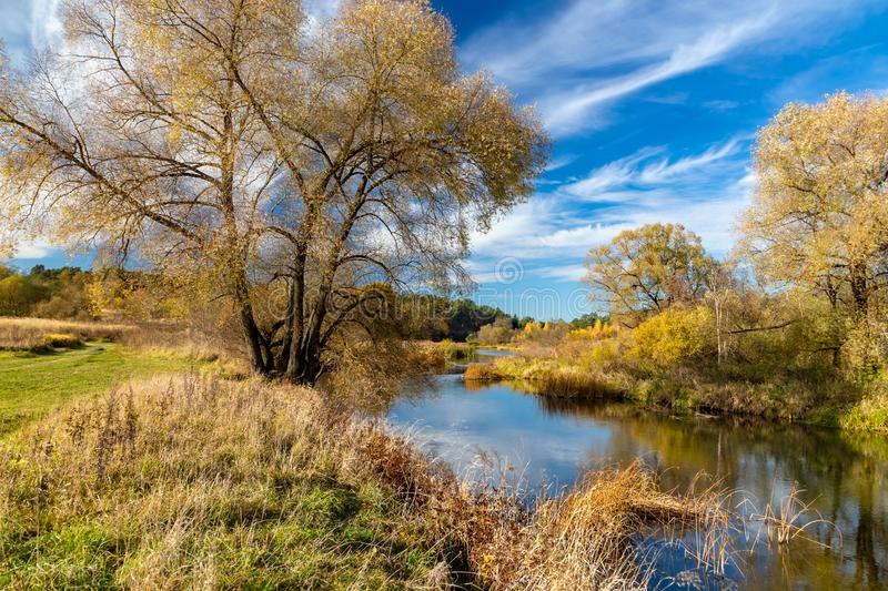 Autumn landscape. View of the river and autumn forest royalty free stock photo