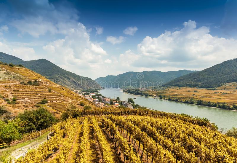 Autumn landscape of Wachau valley, Danube river, Austria.  royalty free stock images