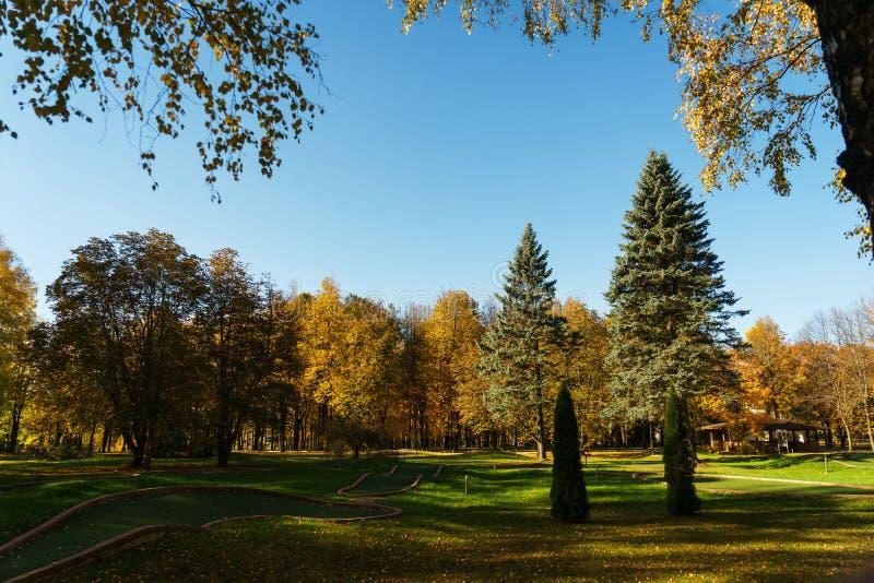 Autumn Landscape Warme de herfstdag in een helder kleurenpark Oranje gebladerte en bomen in het bos royalty-vrije stock foto's