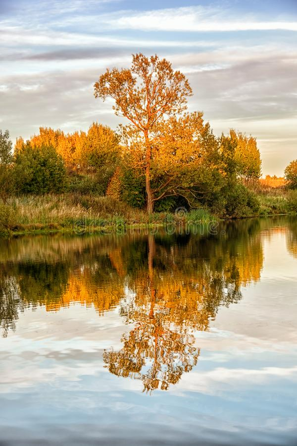 Autumn landscape with water, colorful trees. Autumn landscape with water and colorful trees royalty free stock image