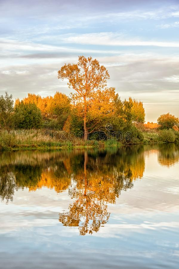 Autumn landscape with water, colorful trees royalty free stock images