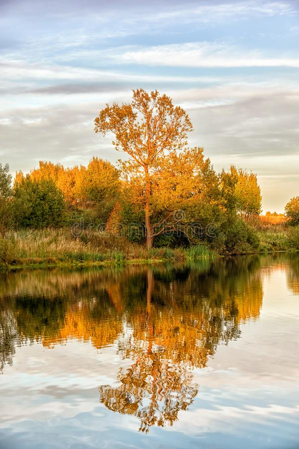 Autumn landscape with water, colorful trees royalty free stock photography