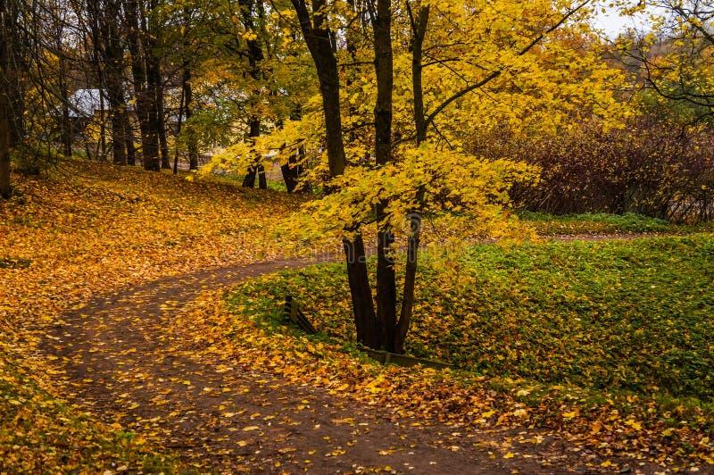 Autumn Landscape Wege im Oranienbaum-Park St Petersburg Herbst 2016 stockfoto