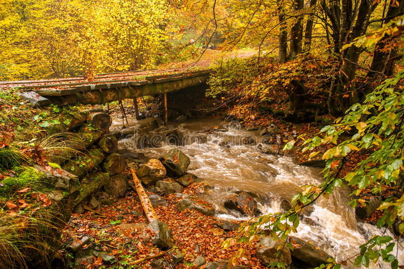 Autumn landscape. In the western Ukrainian Carpathians stock photos