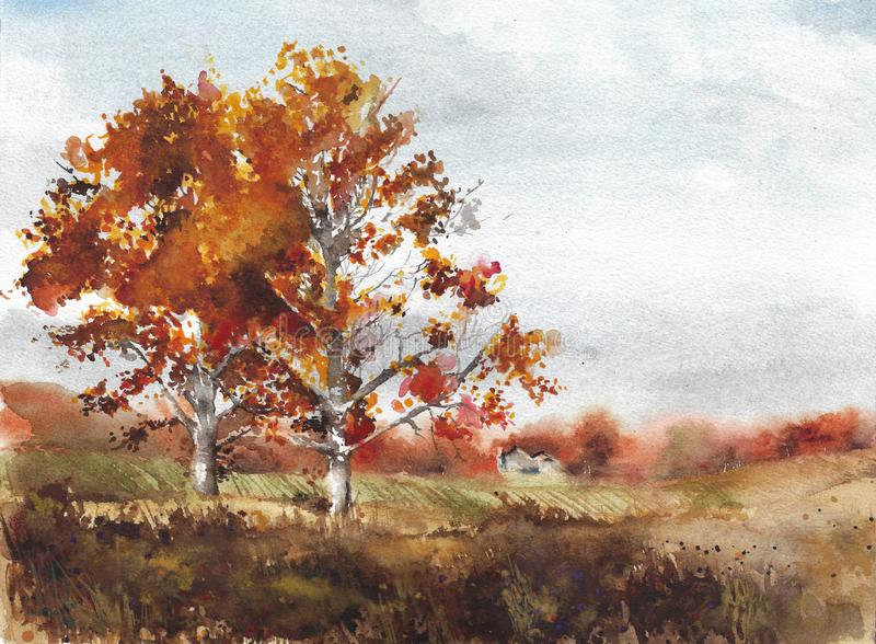 Autumn landscape yellow trees birch fall colors watercolor painting illustration. Nature stock illustration