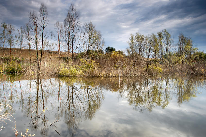 Download Autumn Landscape With Yellow Trees And Small Pond Stock Photo - Image: 10933754