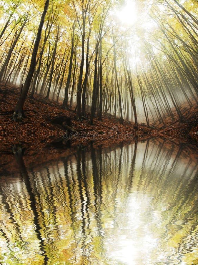 Autumn landscapes stock photography