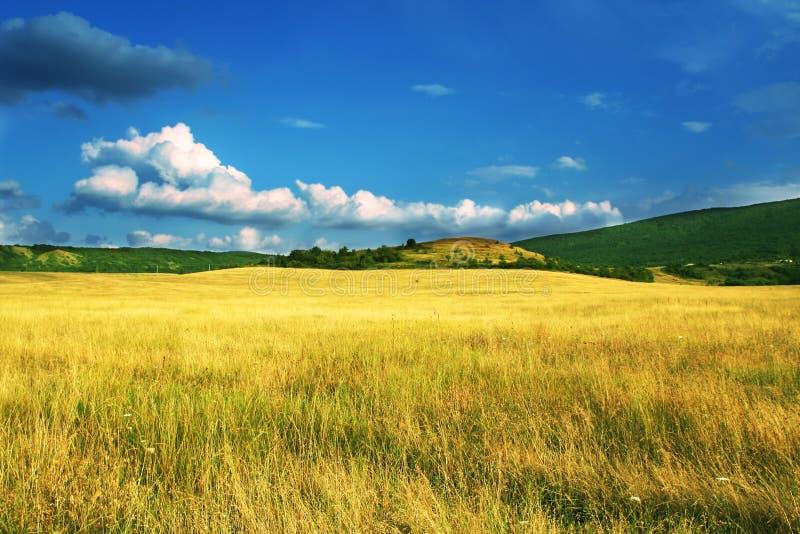 Download Autumn landscapes stock image. Image of harvest, farm - 6558973
